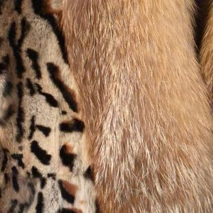 Jackets & Coats - Gorgeous New Fox Jacket from Lord & Taylor's